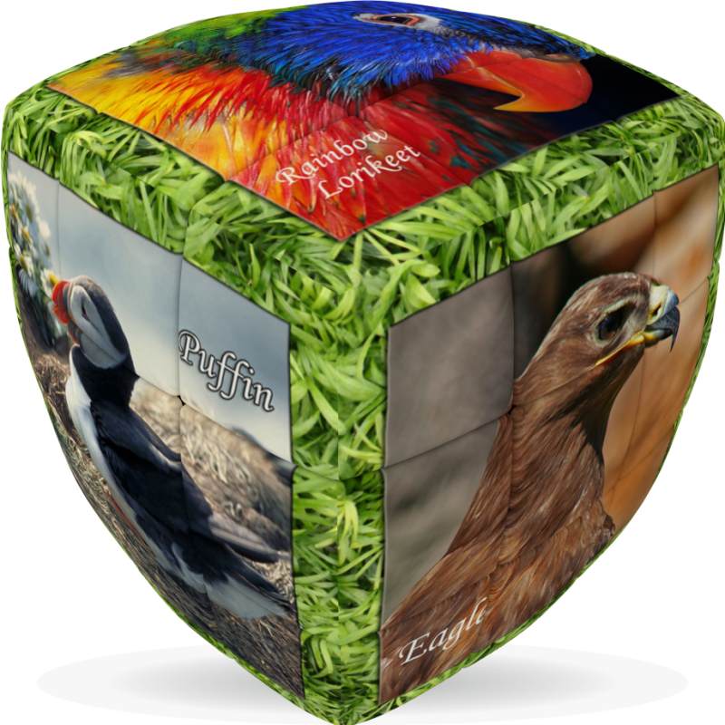 V-Cube Unique Birds - 3 x 3 Pillow Puzzle Cube